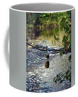 Gypcy River Coffee Mug