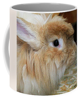 Coffee Mug featuring the photograph Hairy Rabbit by Debbie Stahre