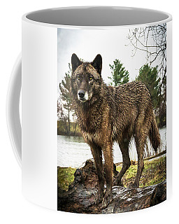 Handsome Niko Coffee Mug
