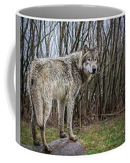 Hangin' Out Coffee Mug