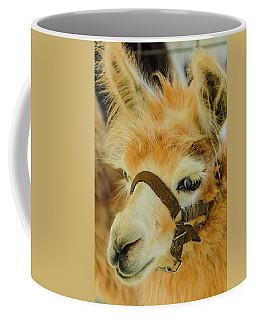 Happy Alpaca Coffee Mug