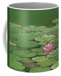 Harmonious Pink Waterlily Coffee Mug