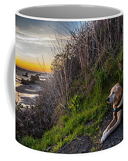 Coffee Mug featuring the photograph Harris Beach Sunset by Matthew Irvin
