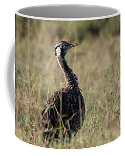 Black-bellied Bustard Coffee Mug