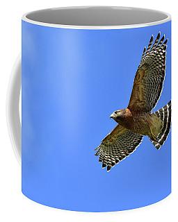 Hawk On The Go Coffee Mug