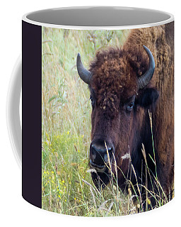 Coffee Mug featuring the photograph Heavy Weight Champion by Sally Sperry