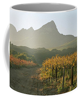 Helderburg Vineyard Coffee Mug