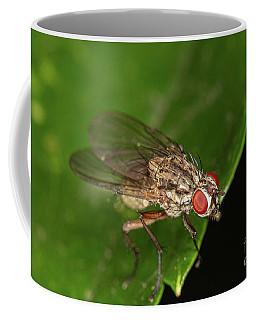 Helina Fly Coffee Mug