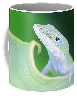 Hello, Anole. 2 Coffee Mug