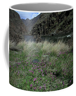 Hells Canyon National Recreation Area Coffee Mug