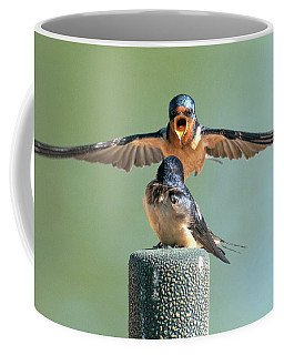 Hey, Babe, Let's Rock N Roll.  Barn Swallows Coffee Mug
