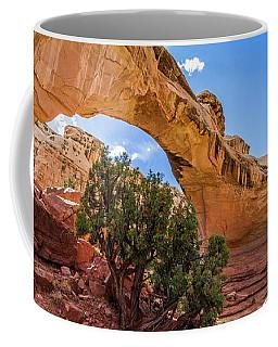 Hickman Natural Bridge Coffee Mug