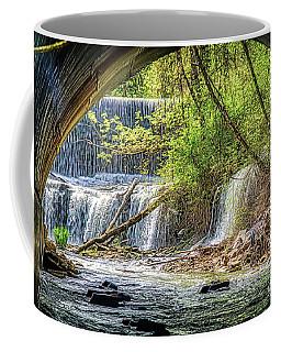 Hidden Falls Coffee Mug