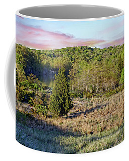 Hidden View Coffee Mug