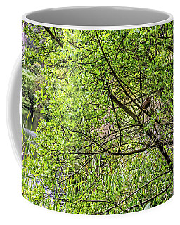 Coffee Mug featuring the photograph Hiding In Plain Sight by Kate Brown