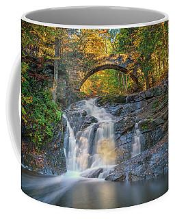 Coffee Mug featuring the photograph High Arch Bridge In Vaughan Woods by Rick Berk