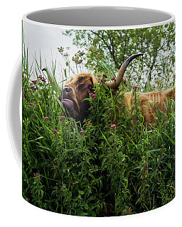 Coffee Mug featuring the photograph Highland Cow In Tall Grass by Scott Lyons