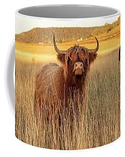 Highland Cows On The Farm Coffee Mug