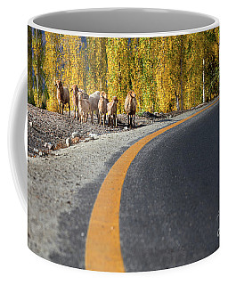 Highway Story Coffee Mug