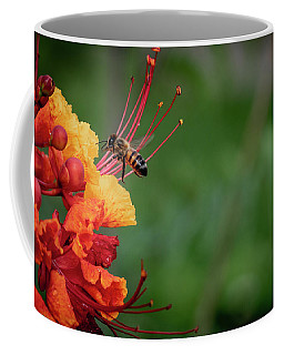 Honey Bee Extraction Coffee Mug