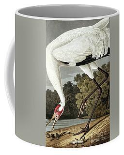 Hooping Crane, Grus Americana By Audubon Coffee Mug