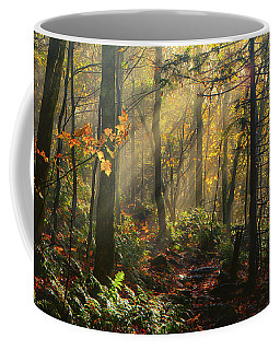 Horizontal Rays Of Sun After A Storm Coffee Mug