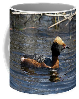 Horned Grebe 102713 Coffee Mug