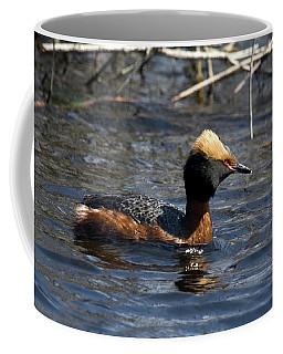 Coffee Mug featuring the photograph Horned Grebe 102713 by Rick Veldman