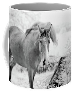 Horse In Infrared Coffee Mug
