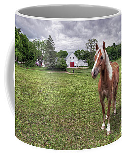 Horse In Pasture Coffee Mug