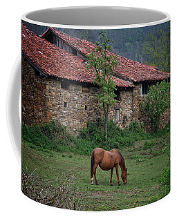 Horse In The Field Next To A Rural House Coffee Mug