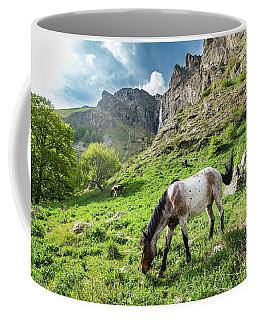 Horse On Balkan Mountain Coffee Mug