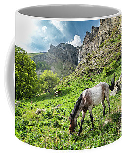 Horse On Balkan Mountain Coffee Mug