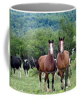 Horses And Cows.  Coffee Mug