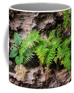 House Of Stone Coffee Mug