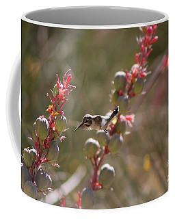 Hummingbird Flying To Red Yucca 1 In 3 Coffee Mug