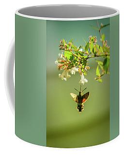Hummingbird Hawk-moth Coffee Mug