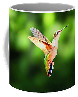 Hummingbird Hovering Coffee Mug
