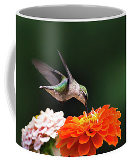 Hummingbird In Flight With Orange Zinnia Flower Coffee Mug