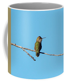 Coffee Mug featuring the photograph Hummingbird by Lukas Miller