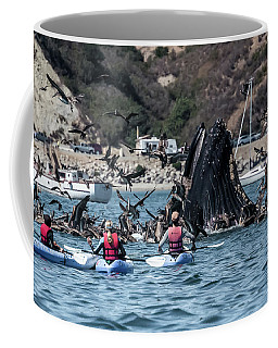 Coffee Mug featuring the photograph Humpbacks In Avila Harbor by Mike Long