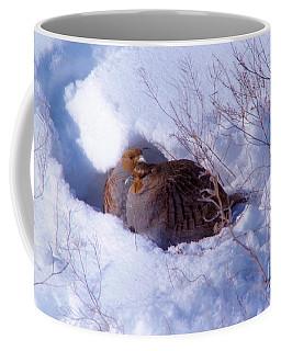 Hunkering Grouse Coffee Mug