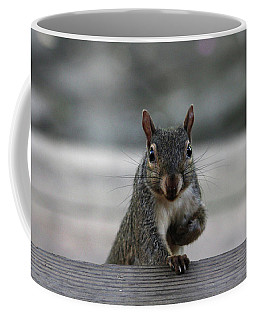 Coffee Mug featuring the photograph I Am Back by Trina Ansel