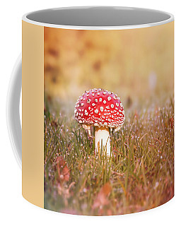 Coffee Mug featuring the photograph I Know The Place by Jaroslav Buna
