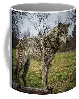 I See It Coffee Mug