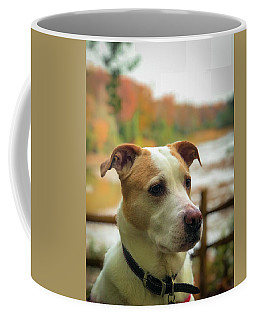 Coffee Mug featuring the photograph I See Something by Lora J Wilson