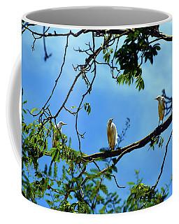 Ibis Perch Coffee Mug