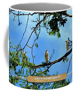 Ibis Perch - Virgin Nature Series Coffee Mug