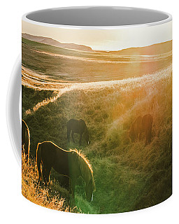 Icelandic Landscapes, Sunset In A Meadow With Horses Grazing  Ba Coffee Mug