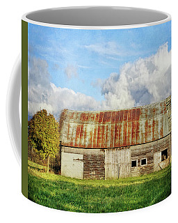 If These Forgotten Walls Could Talk Coffee Mug